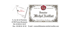 NOELLAT_Michel