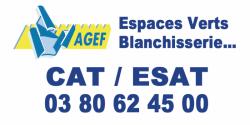 CAT_ESAT